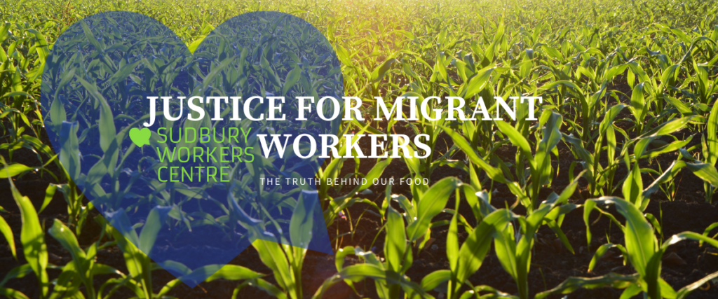 My Mooody Farmer: Justice For Migrant Workers This Election!